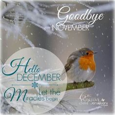 Goodbye November. Hello December.