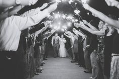 Emily + Brandon   Dover Backyard Wedding » Tampa Wedding and Lifestyle Family Photographer   Bára Miller Photography Blog