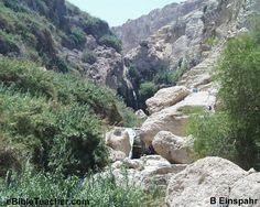 EnGedi, Israel