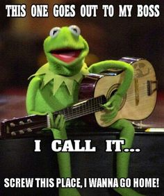 20 Kermit the frog memes Awesome – Fallout Memes Memes Humor, Sarcasm Meme, Job Humor, Haha Funny, Funny Jokes, Funny Stuff, Hilarious Work Memes, Funny Friday Humor, Inappropriate Adult Humor Lmfao