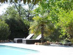 swimmingpool and palmtree...