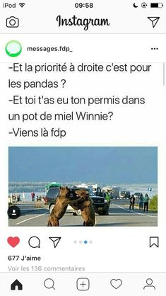 Voilà des images drôles 😂😁 #humour # Humour # amreading # books # wattpad Seriously Funny, How To Speak French, Gaming Memes, Best Memes, Funny Moments, Funny Cute, Funny Jokes, Haha, Funny Pictures