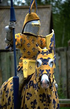 knight jouster