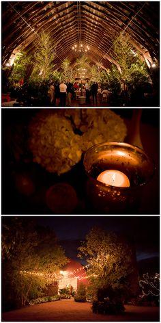 Black Fox Farms Wedding | Chattanooga, TN