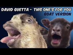Guetta rencontre 3e type