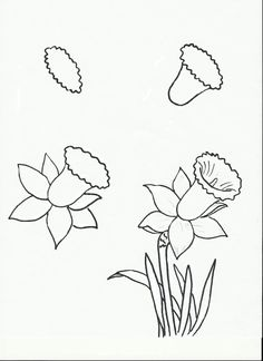 This is for third grade art.perhaps I should learn how to do it? My daffodils end up looking like dinosaurs. This is for third grade art.perhaps I should learn how to do it? My daffodils end up looking like dinosaurs. Drawing Lessons, Drawing Techniques, Drawing Tutorials, Art Tutorials, Drawing Ideas, Drawing Tips, Learn Drawing, Easy Flower Drawings, Flower Sketches