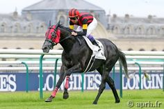 A demonstration of A SHIN HIKARI in the Prix d'Ispahan (Gr1)