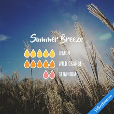 Summer Breeze with doTERRA essential oils.