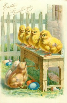 two chicks look up at four chicks lined-up on bench Easter eggs on ground