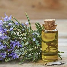 Rosemary Essential Oil May Boost Your Memory Retention