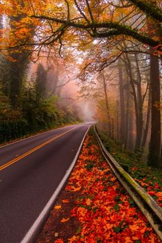 Germantown Road, Portland, US (by Mandar Deshpande)