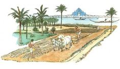 Mesopotamia Irrigation System | The region rested between the two famous rivers, the Tigris. I learned about this in Social Studies Its a great way to farm
