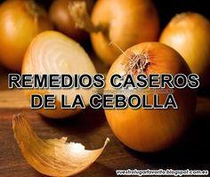 REMEDIOS CASEROS DE LA CEBOLLA