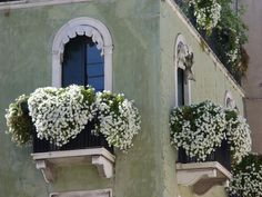 beautiful windows Thought: fake flowers. No one will ever know. Change each season and re-use each year.