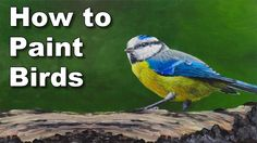 how to paint birds in oil painting tutorial - blue tit time lapse