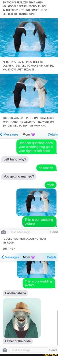 Tap to see the meme Dolphin Jokes, Funny Texts, Funny Jokes, Hilarious, Funny Cute, The Funny, Funny Pins, Tuxedos, Funny Photos