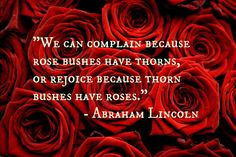 Lincoln on roses