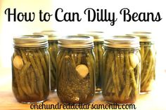 Canning 101 – How to Can Dilly Beans (A green bean pickle!)....... see momma, this is what I was talking about!