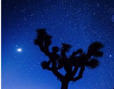 How do you interpret the night sky? This video by Mark Kochte takes a whole new angle.