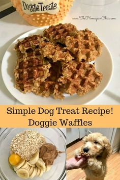 Dog Treat Recipe - Dog Waffles for my dog, Waffles Doggie Waffles! A simple 4 ingredient dog treat recipe! The Homespun ChicsDoggie Waffles! A simple 4 ingredient dog treat recipe! The Homespun Chics Dog Biscuit Recipes, Waffle Recipes, Dog Food Recipes, Easy Dog Treat Recipes, Healthy Dog Treats, Diy Dog Treats, Summer Dog Treats, Puppy Treats, Homemade Dog Cookies