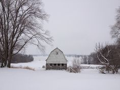 Iowa Christmas - gracefullady, via Flickr