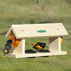 Attract vibrant Orioles with fruit, jelly and nectar feeders. Orioles love oranges and grape jelly. Duncraft has the largest selection of Oriole Feeders made with love in the USA. Oriole Bird Feeders, Wood Bird Feeder, Bird Feeder Craft, Bird House Feeder, Homemade Bird Houses, Homemade Bird Feeders, Bird Houses Diy, Bird Tables, Bird Feeding Station