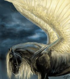 Pégase Pegasus Fantasy Myth Mythical Mystical Legend Wings Enchantment