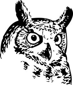 Owl Clip Art is made of my original owl pictures and owl drawings and vintage owl pictures Owl Photos, Owl Pictures, Free Pictures, Free Images, Owl Stencil, Stencils, Wood Badge, Owl Clip Art, Owl Pet