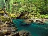 Image detail for -National Park Wa picture, Ohanapecosh River Mt. Rainier National Park ...