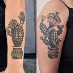 A couple of healed cacti from over a year ago. #btattooing #blacktattooart #tattoo #tattoos #healedtattoo #tttism #blacktattooart #blacktattoo #cactustattoo #cactustattoo