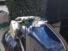 Greyhound Hood Ornament - 2014 Grand National Roadster Show, CA