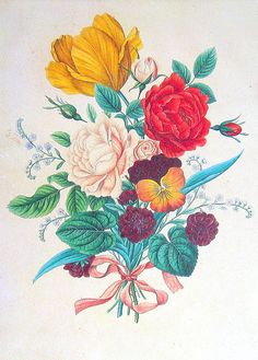 Bouquet Tied With Ribbon 1984 Vintage Book Plate Naturalist Illustration----- tattoo idea!