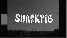 Shark Pig Wedding Reel 2012