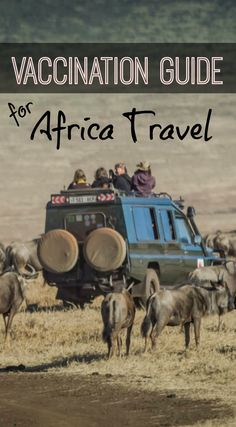 Ultimate Vaccination Guide for Africa Travel. You've decided to book a trip to Africa, it's a dream trip and you're so excited you momentarily forget about the preparation involved in a trip of this kind. When you finally come back to earth, you realize there is much more preparation then you initially thought and you may find yourself instantly overwhelmed. Read the full post at http://www.divergenttravelers.com/ultimate-vaccination-guide-for-africa-travel/