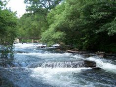 Hailed as the best whitewater stream in #Oklahoma, the Mountain Fork River offers a year-round destination for the best #trout #fishing anywhere in the surrounding region.