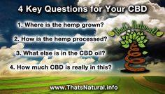 Interested in #CBD for #health?  Keep yourself safe - ask these Four Critical Questions! http://cbdoil.life/blogs/news/29504769-4-key-questions-to-ask-about-your-cbd #news