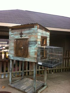I built this pigeon loft out of old wooden pallets and other scraps.