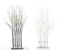 This Lumineo birch twig tree grove has five branches beautifully lit up with warm white LED bulbs, creating a perfectly modern yet classical feature for your home or garden.