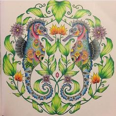 Beautiful! By @jenn.sarah Adult Coloring Book Pages, Free Coloring Pages, Coloring Books, Johanna Basford Books, Johanna Basford Coloring Book, Colored Pencil Tutorial, Secret Garden Coloring Book, Ocean Colors, Polychromos