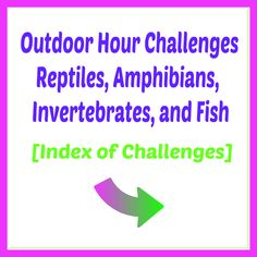 Outdoor Hour Challenge Reptiles Amphibians invertebrates fish nature study ideas index Autumn Nature, Spring Nature, Parts Of A Mushroom, Weather Records, Moon Names, Nature Journal, Nature Study, Reptiles And Amphibians, Field Guide