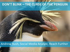The curse of the Penguin - creating Google-friendly content by Reach Further via Slideshare