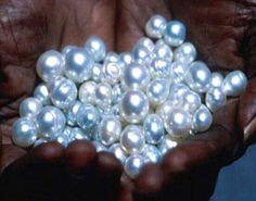 South Sea Pearls. ❤