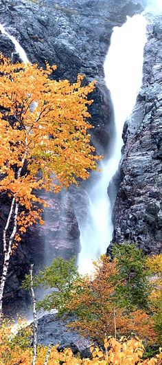 Rattling Brook Falls - 15 minutes from where I grew up and so pretty in the fall!