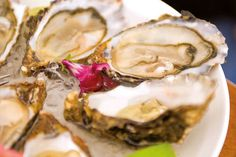 Sylt Royal Oysters, a Northern Specialty from the Island of Sylt. Photo Credit: Jens Koenig
