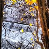 Mill Creek Park, Youngstown, OH by Julie Arduini