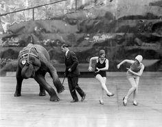 Совместное исполнение чарльстона, США,1926.