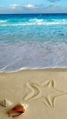 Starfish in the beach sand with ocean shells nearby Beach Quotes, Swim Quotes, Beach Sayings, Ocean Quotes, Quotes Quotes, I Love The Beach, Beach Scenes, Ocean Beach, Summer Beach