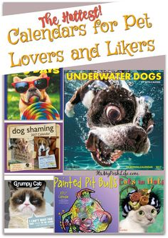These are the HOTTEST CALENDARS for PET LOVERS and Likers!