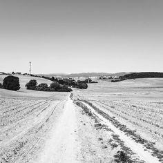 #lackoj #blackandwhitephotography #juh #trencin #slovakia