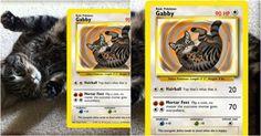 [TOPITRUC] Une carte Pokémon de ton chat ou chien ou nimporte quel animal de compagnie